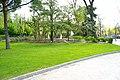 MADRID VERDE JARDIN-PARQUE DE ATENAS - panoramio - Concepcion AMAT ORTA… (2).jpg