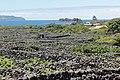 Madalena do Pico - panoramio (7).jpg