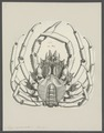 Maja squinado - - Print - Iconographia Zoologica - Special Collections University of Amsterdam - UBAINV0274 095 06 0005.tif
