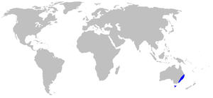 Map-Blandfordiaceae.PNG
