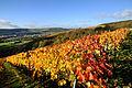 Markelsheim ist ein beliebter Wein- un Erholungsort.jpg