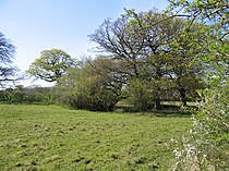 Marl Pit in a Cheshire Field - geograph.org.uk - 412309.jpg