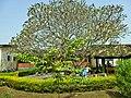 Maternity ward Kpandu B001.jpg