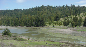 Caspar, South Fork and Eastern Railroad - McGuire Pond as viewed from California highway 20 milepost MEN 13.5. The road on the far side of the pond is the former grade of the Caspar, South Fork and Eastern Railroad.