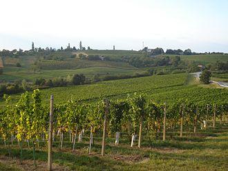 Međimurje County - Wineyards of Železna Gora