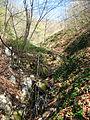 Medvednik - zapadna Srbija - selo Rebelj - dolina Male reke 2.jpg