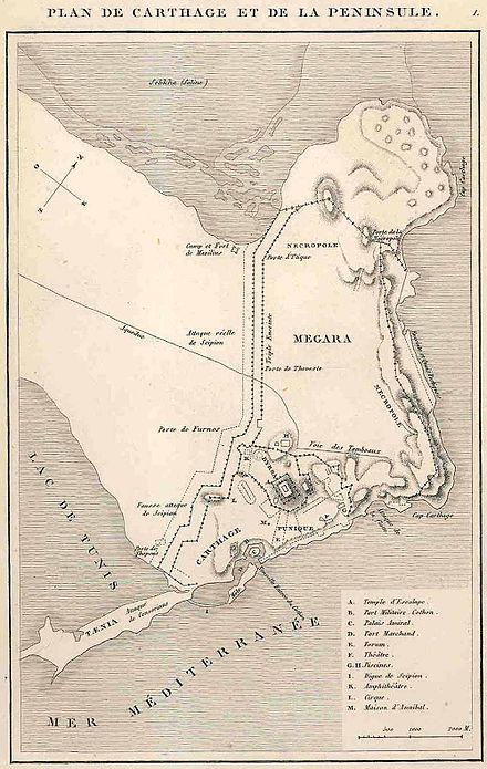 bataille de carthage (149 av. j.-c.) - wikiwand