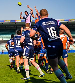 Melbourne Rising - Rising lineout win against Rams in 2014.