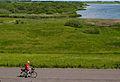 Meldorfer hafen nordsee landseite weg 27.05.2012 13-50-34.jpg