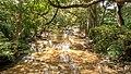 Menik River, Katharagama, Sri Lanka.jpg