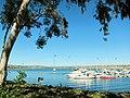 Mission Bay, San Diego, CA, USA - panoramio (5).jpg
