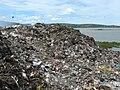 Montaña de basura junto al lago Managua.jpg