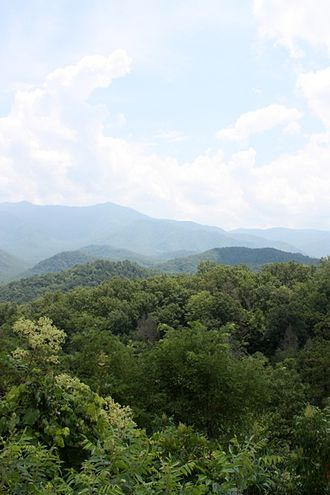 Elevational diversity gradient - View of Mont LeConte in Great Smokey Mountains National Park, Tennessee