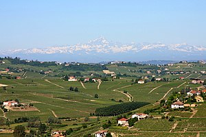 Montferrat - A landscape in Montferrat: view from San Marzano Oliveto, Astesan Montferrat, toward Monviso