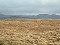 Moor and Hills - geograph.org.uk - 353133.jpg