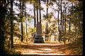 Moores Creek National Battlefield MOCR0951.jpg
