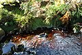 Mountain stream, Tullynaglack - geograph.org.uk - 974248.jpg