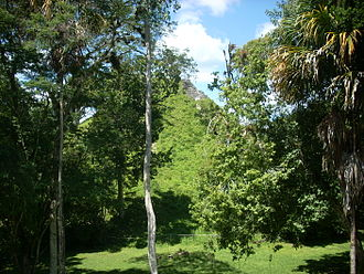 Mundo Perdido, Tikal - The collapsed and overgrown east face of the Lost World Pyramid, as seen from the East Platform of the E-Group