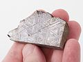 Muonionalusta meteorite 1 (14597778461) (2).jpg