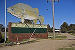 Murray Cod Hatcheries on the outskirts of Gumly Gumly, New South Wales on the Sturt Highway