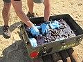 NAVFAC EXWC assists Navy Explosive Ordnance Disposal (14169266908).jpg