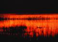 NRCSSD01029 - South Dakota (6077)(NRCS Photo Gallery).tif
