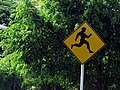 Naked Joggers Crossing - Flickr - treegrow.jpg
