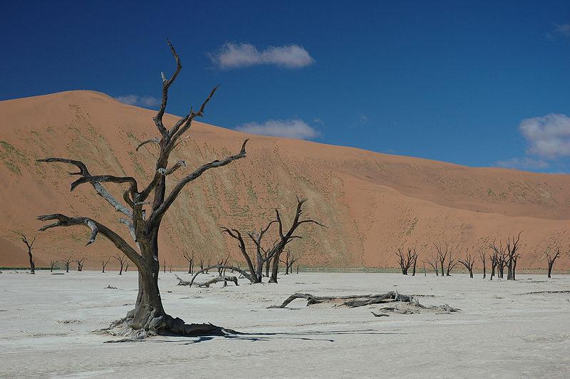 File:Namibie Sossusvlei 13.JPG