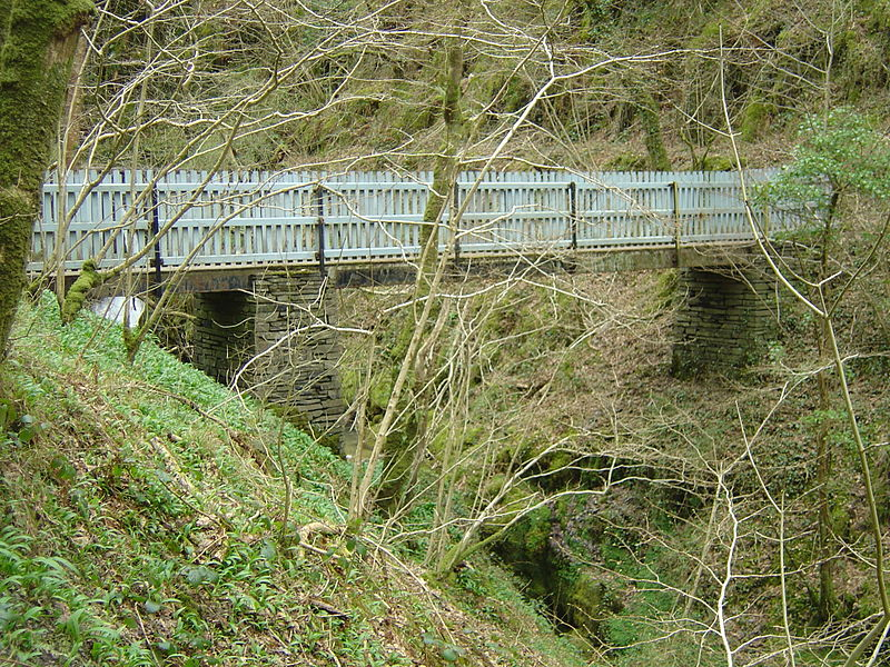 File:Nant Gwernol footbridge - 2008-03-18.jpg