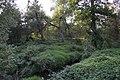 Natural monument Smutny (4).JPG