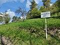 Nature reserve Sonnebierg 20210503 110600.jpg
