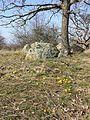 Naturschutzgebiet Fehhaube-Kogelsteine sl8.jpg