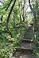 Naturschutzgebiet Glindower Alpen 3.jpg