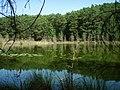 Naturschutzgebiet Teufelssee (2015-08-18 b).jpg