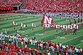 NebraskaCornhuskers-Flags-9-6-08.jpg