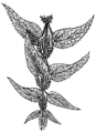 Nettle 2 (PSF).png