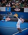 Nieminen 2010 Australian Open.jpg