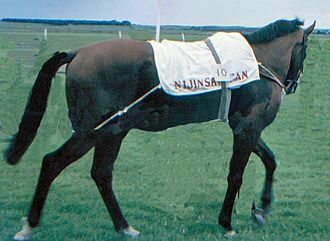 British Classic Races - Nijinsky, the last winner of the Triple Crown in 1970