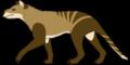 Nimbacinus dicksoni reconstruction 2.png