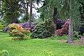Nuneham Courtney Arboretum - geograph.org.uk - 1262963.jpg