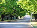 Oak Avenue Potchefstroom-003.jpg