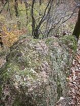 Oberthal-Teufelskanzel-20081026-05.jpg