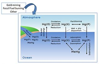 Mercury pollution in the ocean