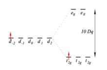 Structure electronique ru