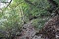 Ohiopyle State Park River Trail - panoramio (12).jpg
