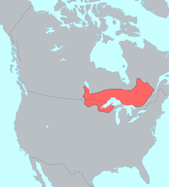 Ojibwe - Distribution of Ojibwe-speaking people
