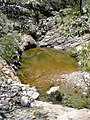 Ojo de agua - panoramio (1).jpg