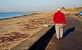 On The Coastal Path - geograph.org.uk - 1096536.jpg