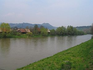 Orava (river) - Orava River at Dolný Kubín, showing houses of Záskalie neighbourhood