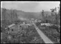 Oruaiwi township, also known as Waituhi ATLIB 324678.png